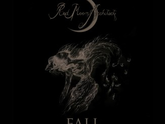 FALL_cover_FINAL